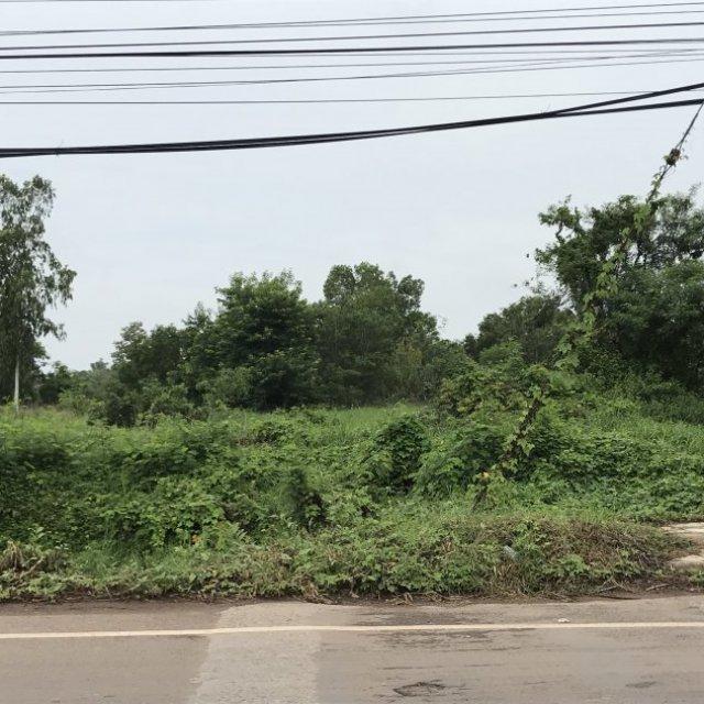 ด่วน  ขายที่ดิน 28.3 ไร่ ติดถนนชยางกูร เลิงนกทา จ.ยโสธร อยู่ในเขตเทศบาล  ใกล้โลตัส ที่สวยไม่แพง